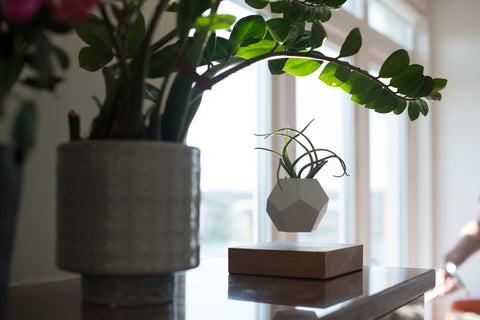 FLYTE hovering planter