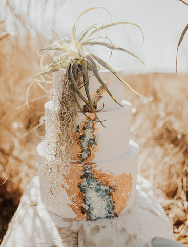air plant wedding