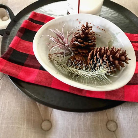 Tillandsia air plants holiday decor