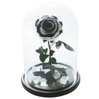 Black & White Forbidden Rose in Glass Dome