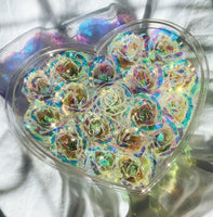 Galaxy Rose Heart