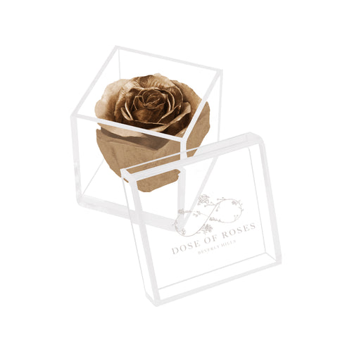 Dose of Roses - Enchanted LED Rose – Gold -