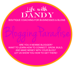 Bloggers Paradise Package