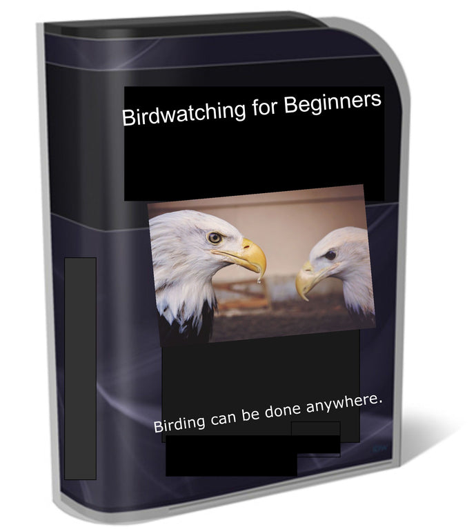 Bird Watching For Beginners - owlsbooksnmore.com
