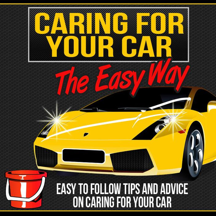 Caring for Your Car - The Easy Way - owlsbooksnmore.com