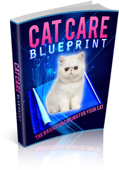 Cat Care Blueprint - owlsbooksnmore.com