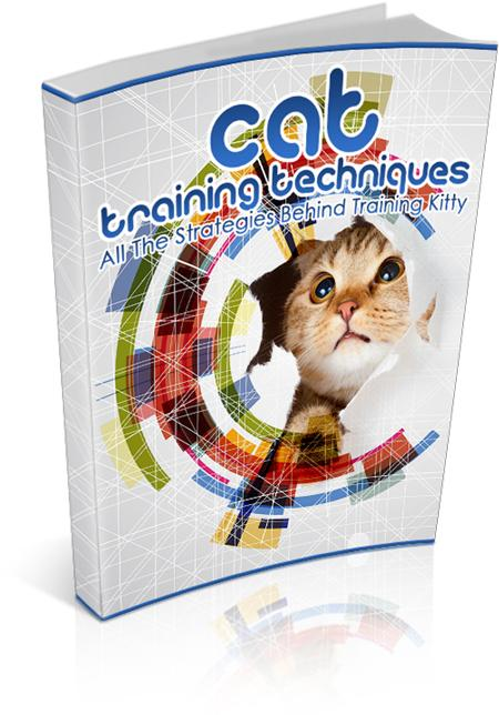 Cat Training Techniques - owlsbooksnmore.com