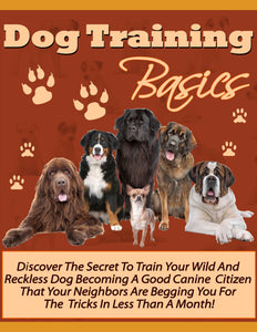 Dog Training Basics - owlsbooksnmore.com