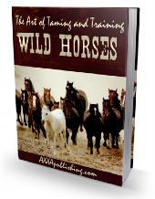 The Art of Taming and Training Wild Horses - owlsbooksnmore.com
