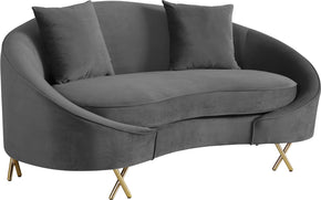 Meridian Furniture 679Grey-L Serpentine Grey Velvet Loveseat 704831400687