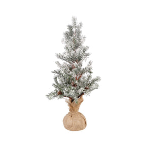 Winters Edge 21.5-Inch Tree Frosted Evergreen,burlap Accessories