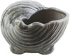 Clearwater Coastal Shell Charcoal Light Gray Accessories