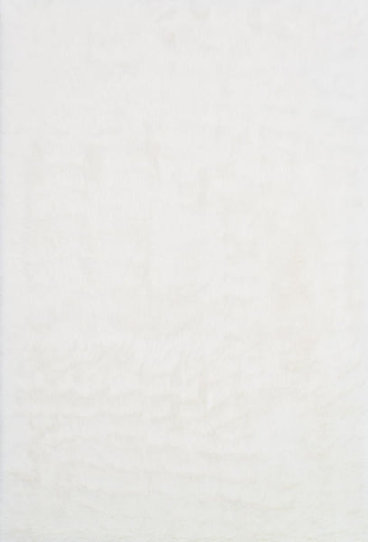 Animal, Ivory & Whites, Rugs, Shag - Loloi Rugs DANSDA-04IV002030 Loloi Danso Shag Ivory Area Rug | 841847073983 | Only $59.00. Buy today at http://www.contemporaryfurniturewarehouse.com