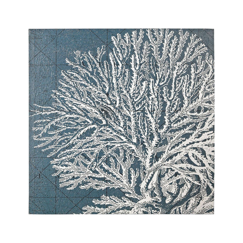 White Coral Print White,blue Art