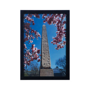 Central Park Obelisk Grain De Bois Noir Art