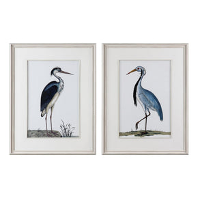 Shore Birds Framed Prints S/2 Art