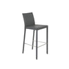 Hasina Bar Stool in Gray with Polished Stainless Steel Legs - Set of 2