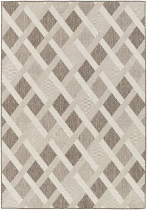 Zanzibar Area Rug Gray Neutral