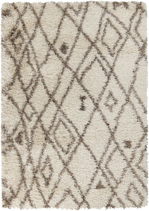 Browns, Contemporary, Rugs, Shag, Tan & Neutrals - Surya RHA1020-23 Rhapsody Shag Area Rug Neutral | 764262909951 | Only $104.40. Buy today at http://www.contemporaryfurniturewarehouse.com