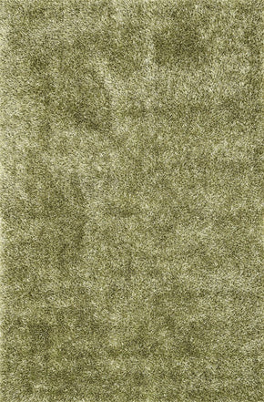Loloi Carrera Shag Green Area Rug