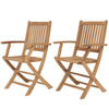 Amazonia Teak London Teak Folding Armchair (set of 2)