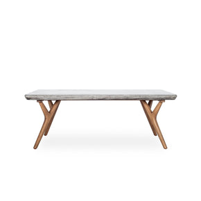 Amari Indoor / Outdoor Concrete Natural Wood Coffee Table