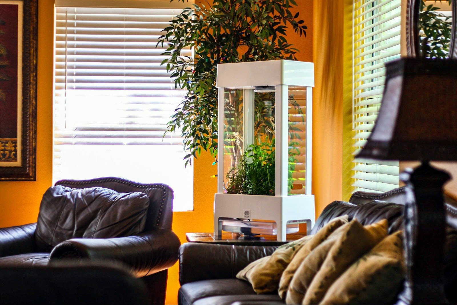 5 Tips for Growing a Luscious Indoor Garden With Smart Tech