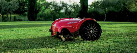 Ambrogio L250 Deluxe Lawn Mover / Wellbots
