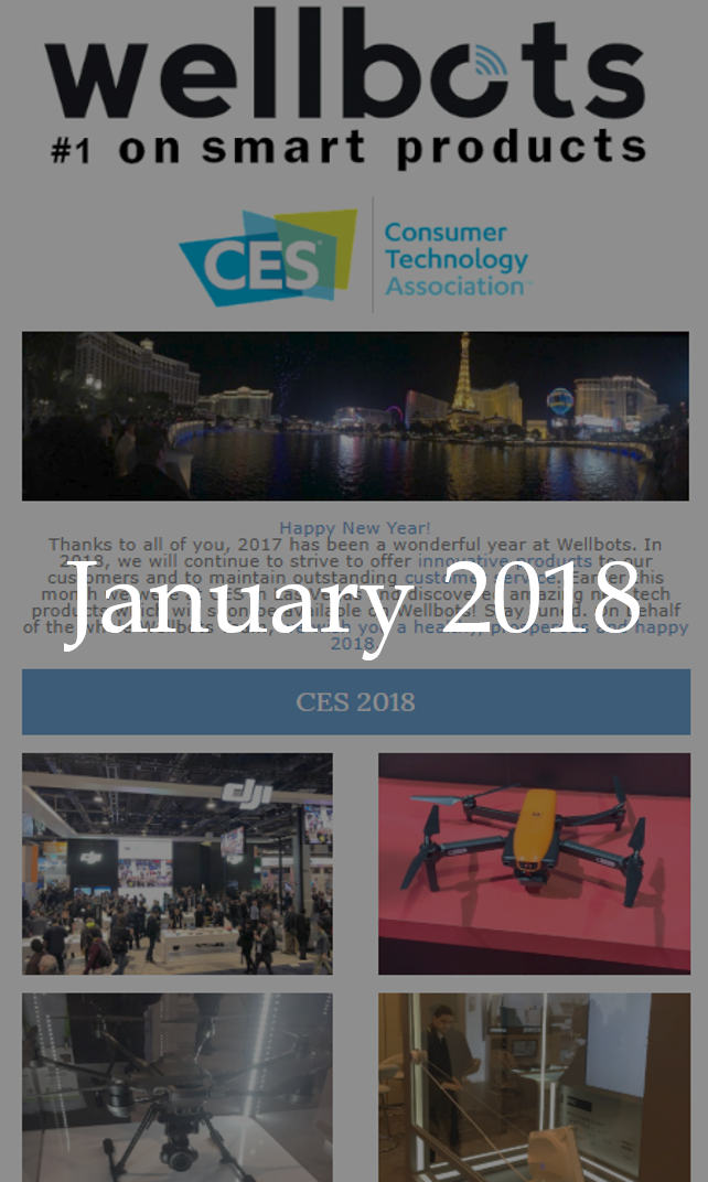 wellbots-newsletter-january-2018.png