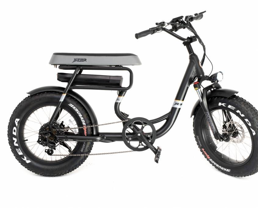 Mule 2021 two-seated Electric Fat Bike Electric Scooters Green Bike