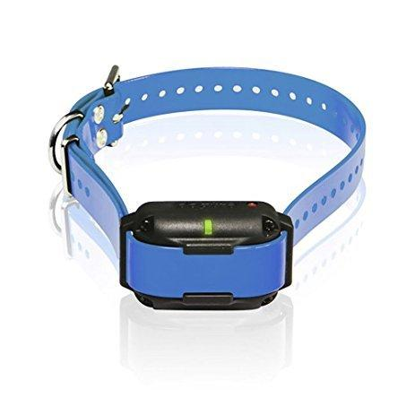Dogtra Edge RT Additional Collar