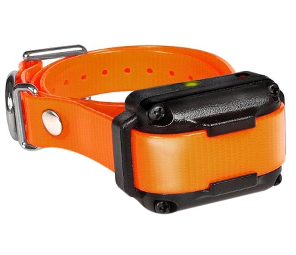 Dogtra IQ-Plus Additional Receiver Orange Strap Pets Dogtra