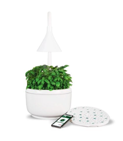 SproutsIO Smart Garden Smart Home SproutsIO