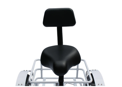 Anywhere Trike Rugged Edition