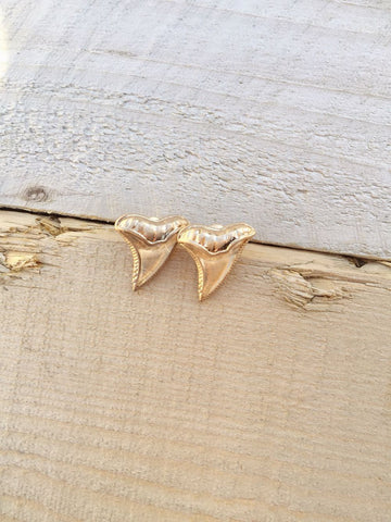 Golden Shark Tooth Stud Earrings - deloom