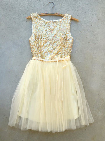 Sparkling Sequin Party Dress