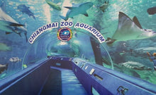 Load image into Gallery viewer, Chiang Mai Zoo & Aquarium