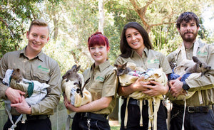 Featherdale Wildlife Park Blue Mountains in Style Full Day Tour