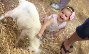 Cheap Sydney Royal Easter Show Admission Ticket Deals(Bar Code Direct Entry)