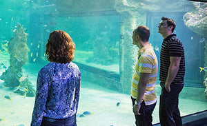 Cheap Discounted Sea Life Sydney Aquarium Instant E-Ticket Deals