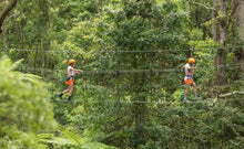 Load image into Gallery viewer, Illawarra Fly Zipline Tour & Treetops Talk