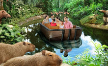 Load image into Gallery viewer, Singapore River Safari