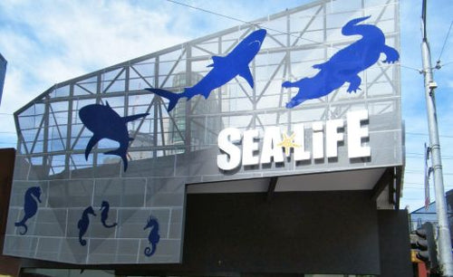 Sea Life Melbourne Aquarium Entry E-Ticket