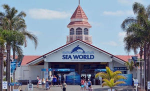 Movie World, SEA World and Paradise Country
