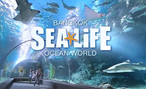 SIAM SEA LIFE Bangkok Ocean World