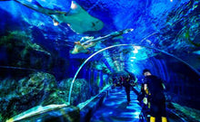 Load image into Gallery viewer, SIAM SEA LIFE Bangkok Ocean World