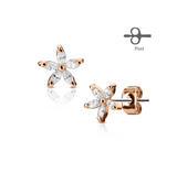 Children's Earrings:  Surgical Steel with Rose Gold IP White CZ Flower Earrings