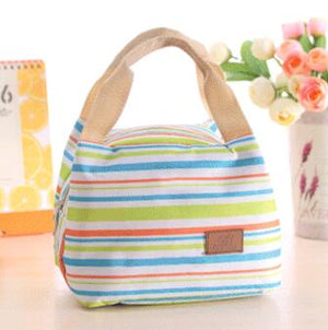 Fashionable Modern Insulated Lunch Bag