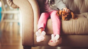 Choosing The Perfect Family Dog