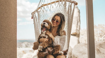 7 Tips For First Time Dog Owners